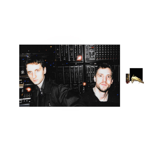 These New Puritans - Videos and Albums - VinylWorld