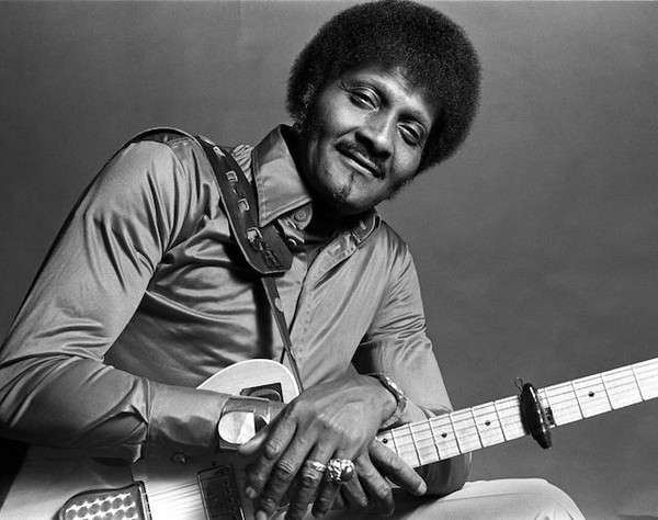 Albert Collins - Videos and Albums - VinylWorld