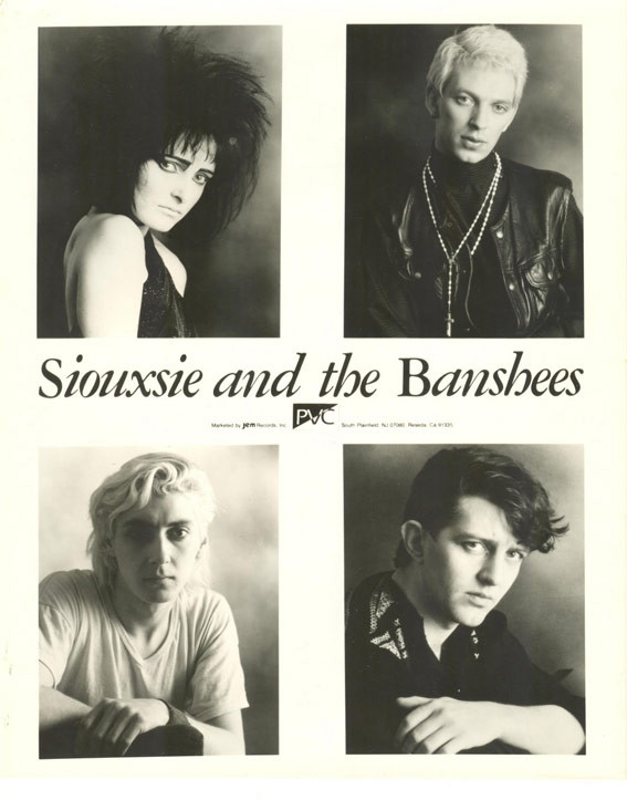 Siouxsie & The Banshees - Videos and Albums - VinylWorld