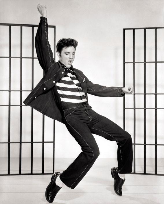 Elvis Presley - Videos and Albums - VinylWorld