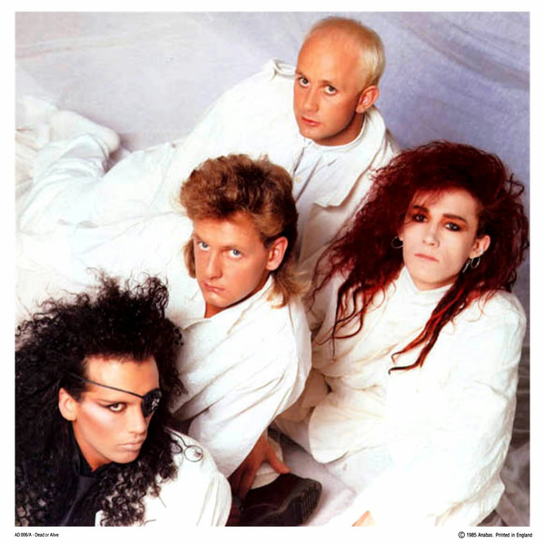 Dead Or Alive - Videos and Albums - VinylWorld