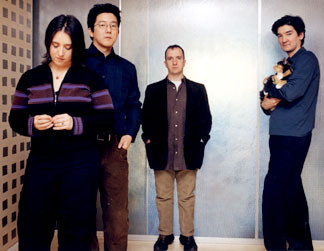 The Magnetic Fields - Videos and Albums - VinylWorld