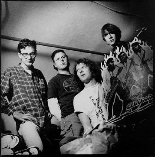 Mudhoney - Videos and Albums - VinylWorld