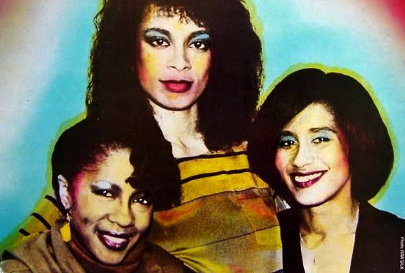 Raw Silk - Videos and Albums - VinylWorld