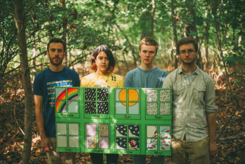 Pinegrove - Videos and Albums - VinylWorld
