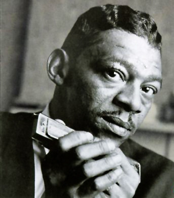 Little Walter - Videos and Albums - VinylWorld