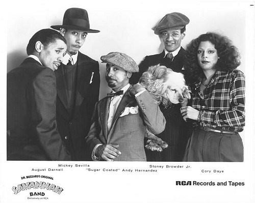 Dr. Buzzard's Original Savannah Band - Videos and Albums - VinylWorld