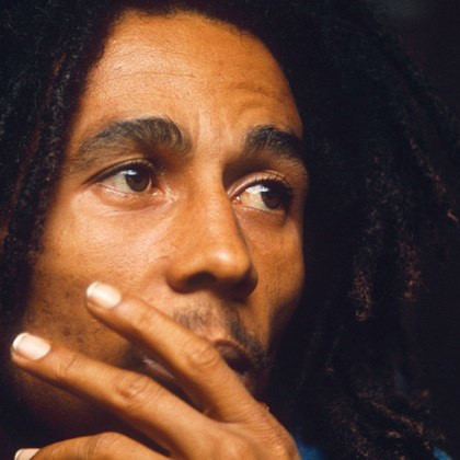 Bob Marley - Videos and Albums - VinylWorld