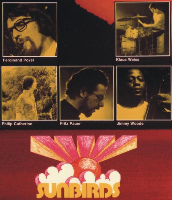 Sunbirds - Videos and Albums - VinylWorld