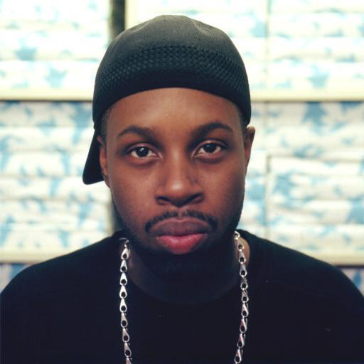 J Dilla - Videos and Albums - VinylWorld