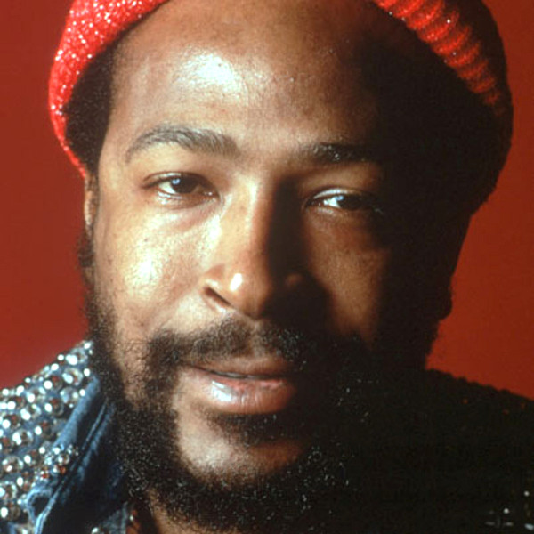 Marvin Gaye - Videos and Albums - VinylWorld