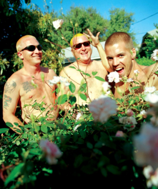 Sublime (2) - Videos and Albums - VinylWorld