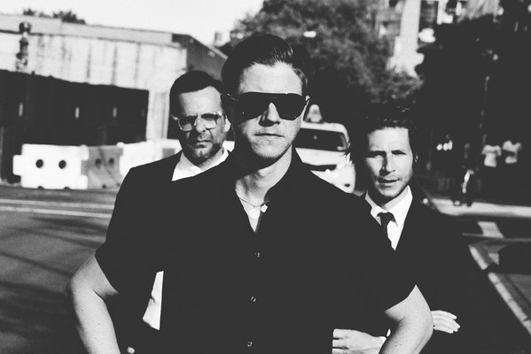 Interpol - Videos and Albums - VinylWorld