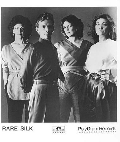 Rare Silk - Videos and Albums - VinylWorld