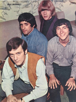 The Beau Brummels - Videos and Albums - VinylWorld