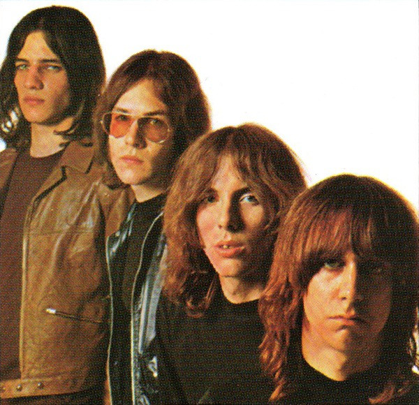 The Stooges - Videos and Albums - VinylWorld