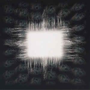 Ænima - Album Cover - VinylWorld