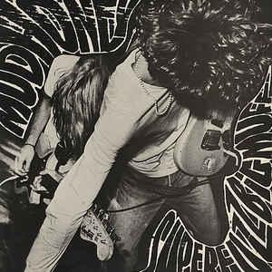 Mudhoney - Superfuzz Bigmuff - VinylWorld