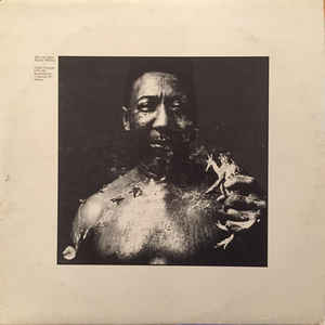 Muddy Waters - After The Rain - Album Cover