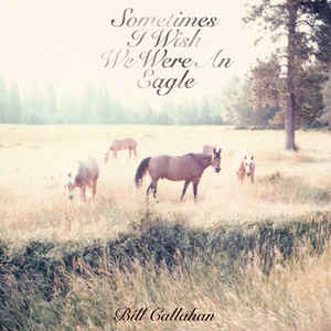 Bill Callahan - Sometimes I Wish We Were An Eagle - Album Cover