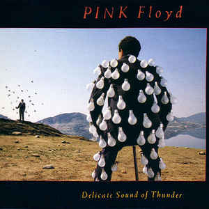 Pink Floyd - Delicate Sound Of Thunder - Album Cover