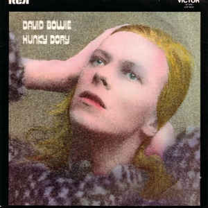 Hunky Dory - Album Cover - VinylWorld