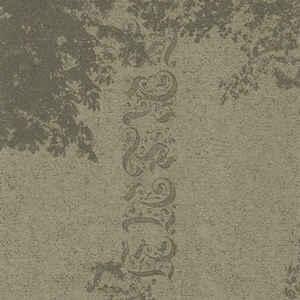 Jacaszek - Treny - Album Cover
