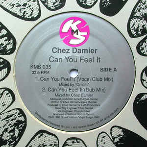 Chez Damier - Can You Feel It - Album Cover