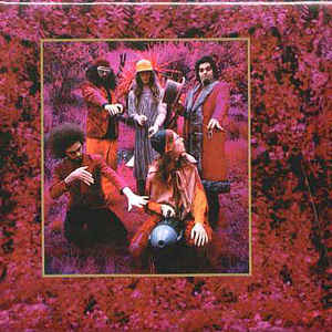 Captain Beefheart And His Magic Band - Grow Fins: Rarities (1965-1982) - Album Cover