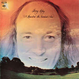 Terry Riley - A Rainbow In Curved Air - Album Cover